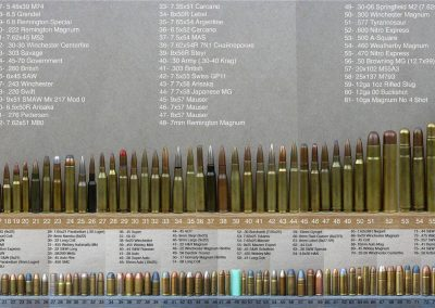 Ammo comparisons of the world